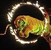 Цирки в Петровск-Забайкальском