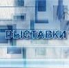 Выставки в Петровск-Забайкальском