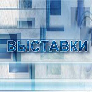 Выставки Петровск-Забайкальского